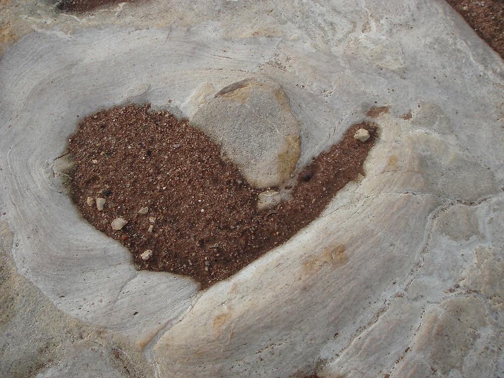 Heart by Edelweiss