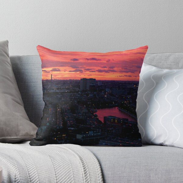Rotterdam at Sunset, from Euromast Throw Pillow