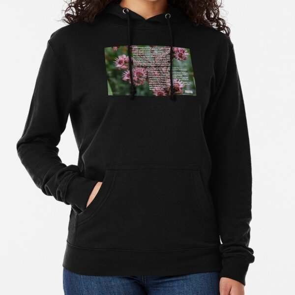 I Would Strongly Encourage You Lightweight Hoodie