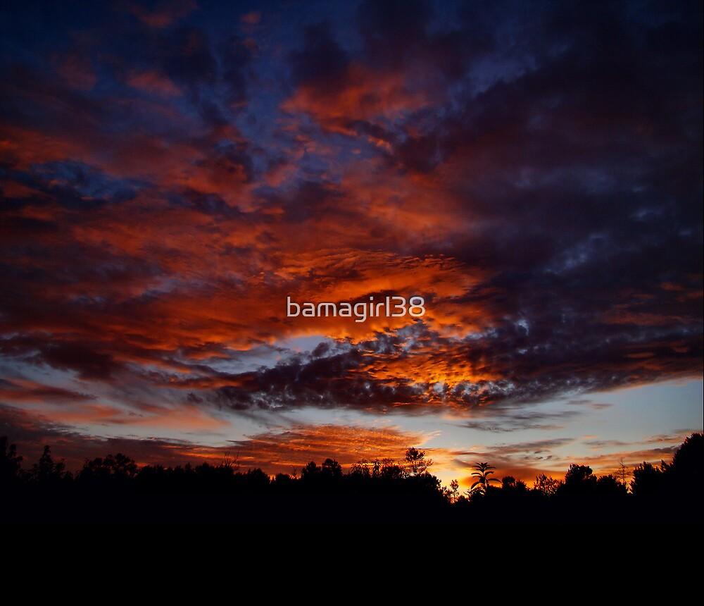 Sunrise 2 by bamagirl38