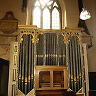 Shrewsbury Cathedral Organ by kalaryder
