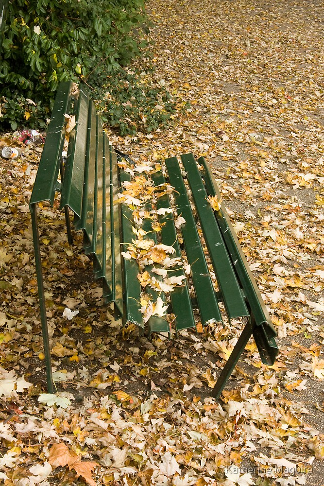 Leaves on Bench by Katherine Maguire