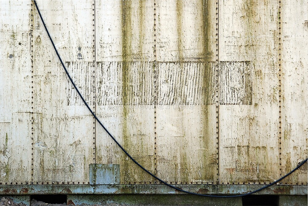 dumpster lines by Annemie Hiele