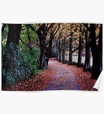 Autumns Golden Gown Poster