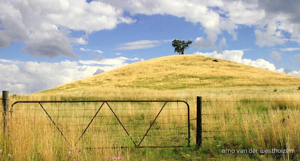 one tree hill by arno van der westhuizen