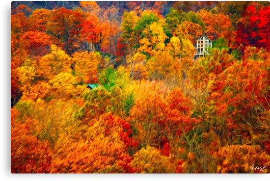 In the Midst of Color by Paul Wolf