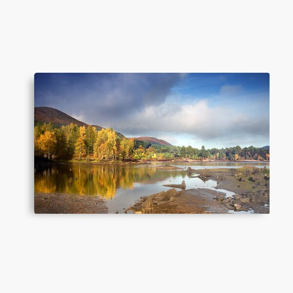 Glen Affric autumn Metal Print