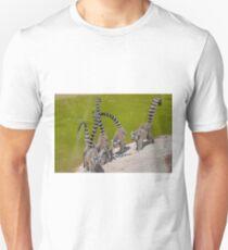 lemur at the zoo Unisex T-Shirt