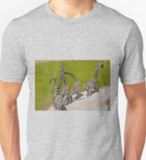 lemur at the zoo Unisex T-Shirt