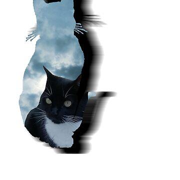 cat sky by gemzysworld