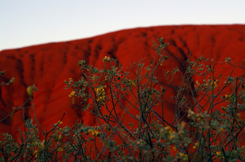 red rock by chaisson