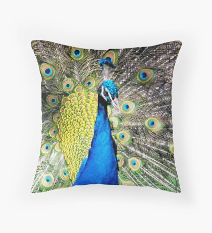 Spring's magnificent colours Throw Pillow