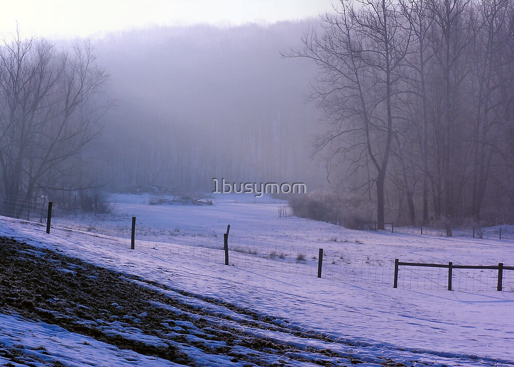 light filtering through winter fog by 1busymom