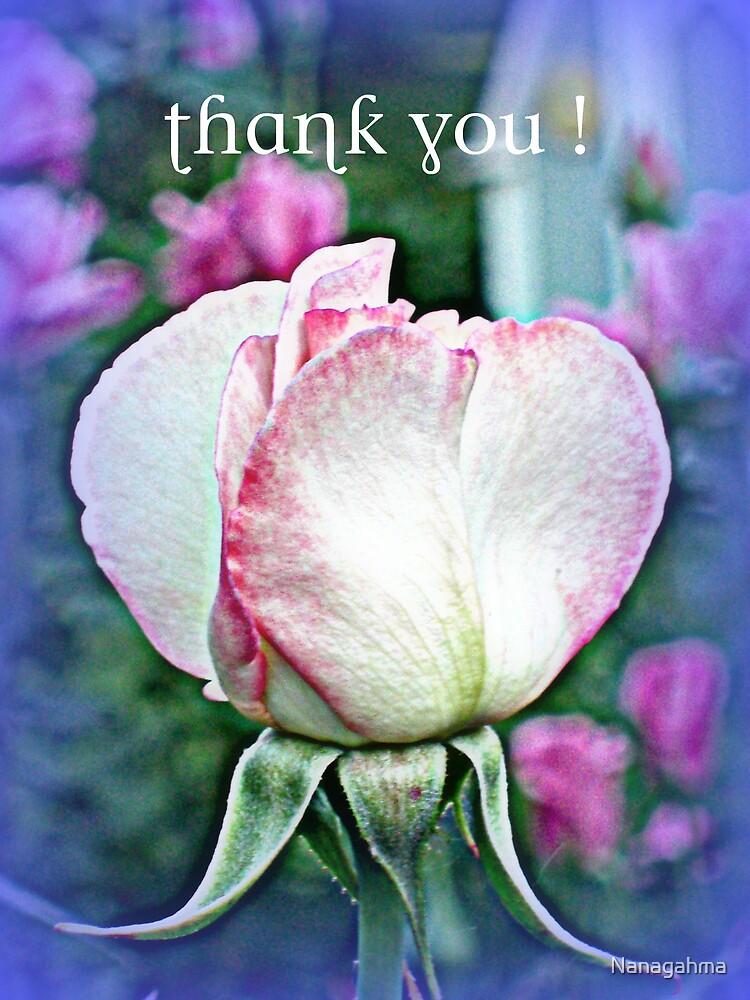 Sheer Bliss bud, Thank You by Nanagahma