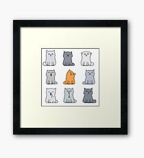 Nine cute kittens Framed Print