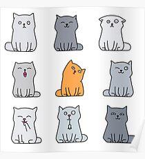 Nine cute kittens Poster