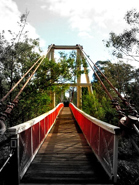 Bridge at Yarra Bend by Shannon Byous Ruddy