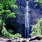 Hanakapiai Falls by kevin smith  skystudiohawaii
