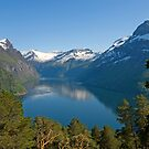 Trees, lake and mountains by julie08