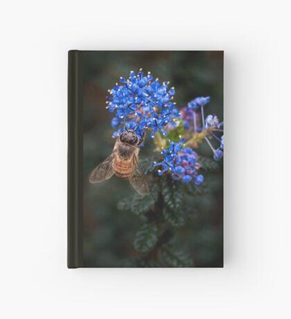 Biene auf Ceanothus Notizbuch