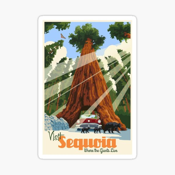 Sequoia National Park Vintage Retro Travel Decal Sticker Sticker