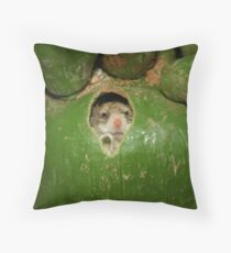 Low income housing. Throw Pillow