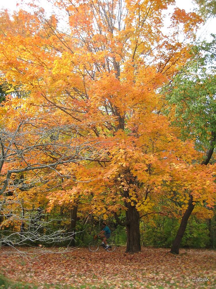 Autumn by dabak