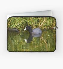 Eurasian Coot Laptop Sleeve