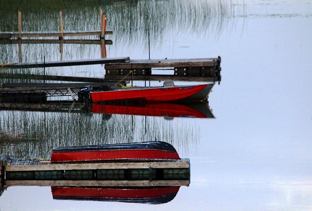 Twilight Reflections by Debbie Oppermann