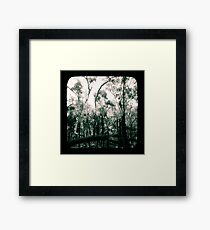 Bush Country Framed Print