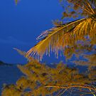Golden Leave by Agnes Leong