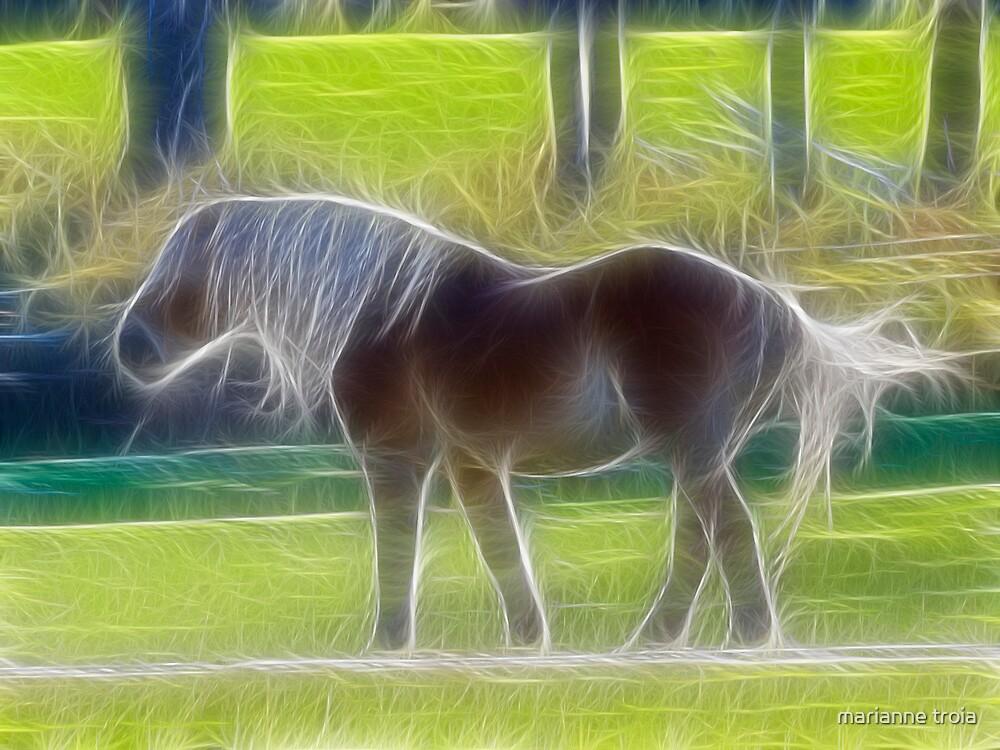 fractalius pony by marianne troia