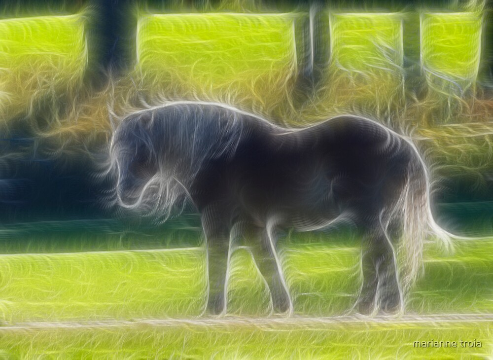 fractalius pony 2 by marianne troia