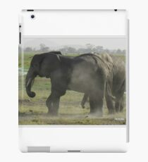 Elephants Cool Off With Sand iPad Case/Skin