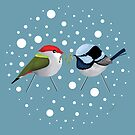 Christmas Finch and Wren by Karin Taylor