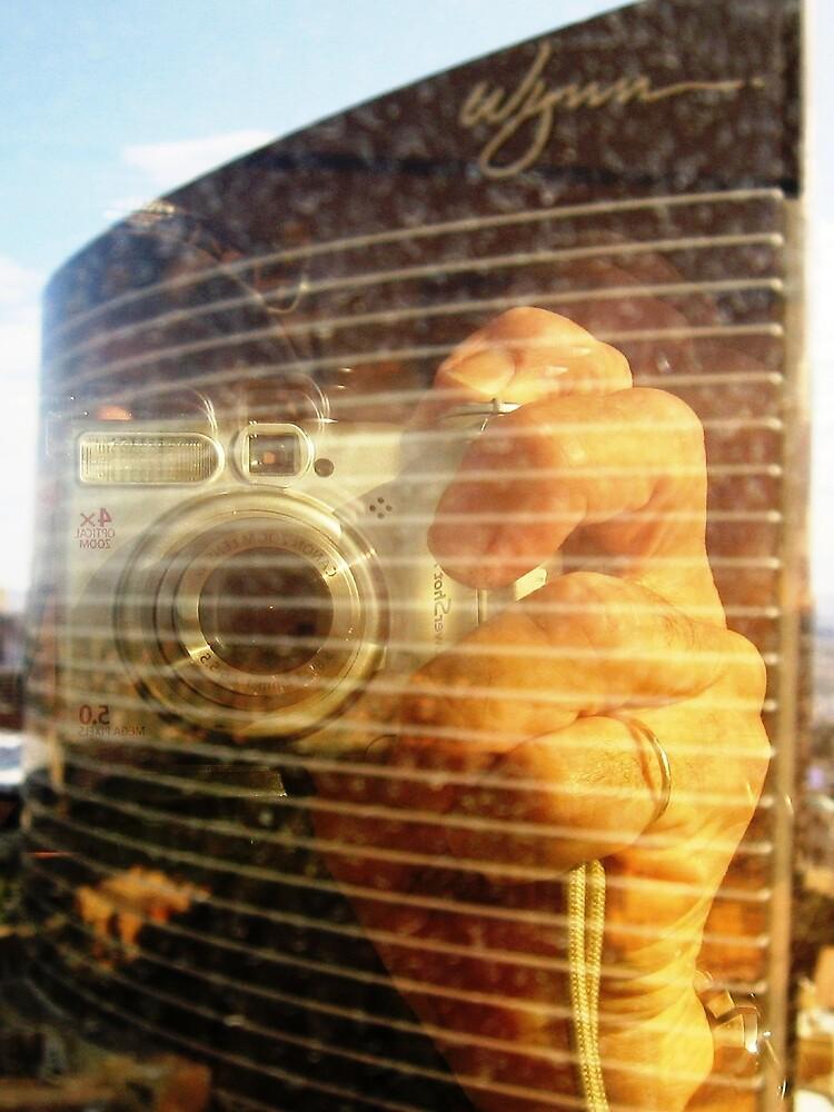 Reflection in the Window  by WhiteDove Studio kj gordon