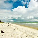 White Sands of Panama by Barbara  Brown