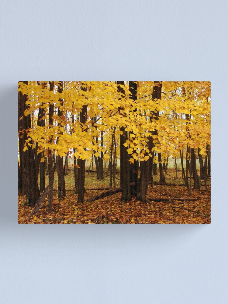 Alternate view of Second Spring Canvas Print