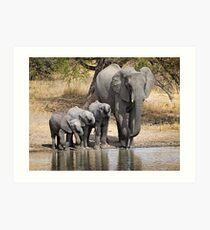 Elephant Mom and Babies Art Print
