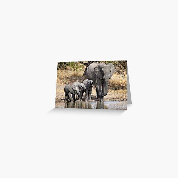 Elephant Mom and Babies Greeting Card