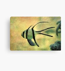 fishy 02 Canvas Print