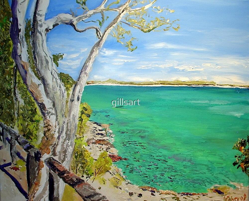 Noosa National Park by gillsart