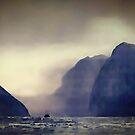 Milford Sound  by Albert