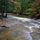 October in New Hampshire by Joanne  Bradley