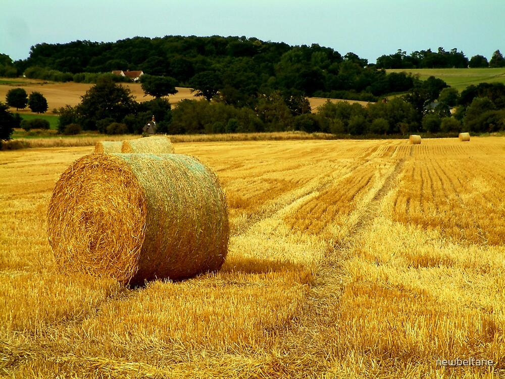 Harvest by newbeltane