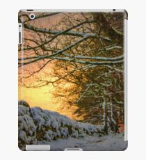 magical woodland.... by Phil Darby iPad Case/Skin