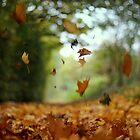 Swirly Blurry Autumn by ChocChipCookie