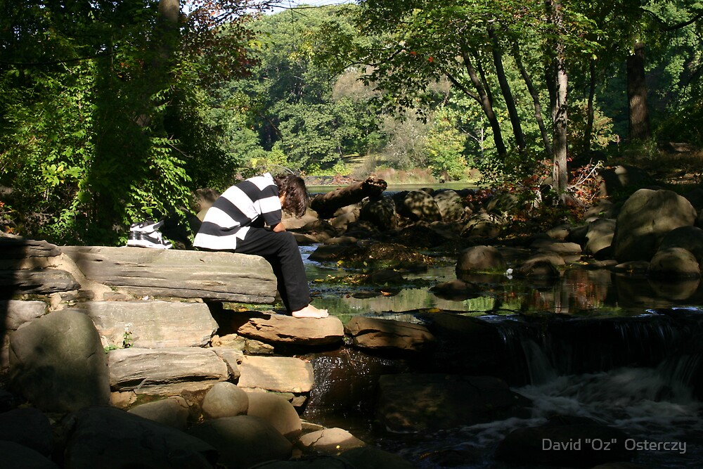 "Reflection and solitude. by David ""Oz""  Osterczy"