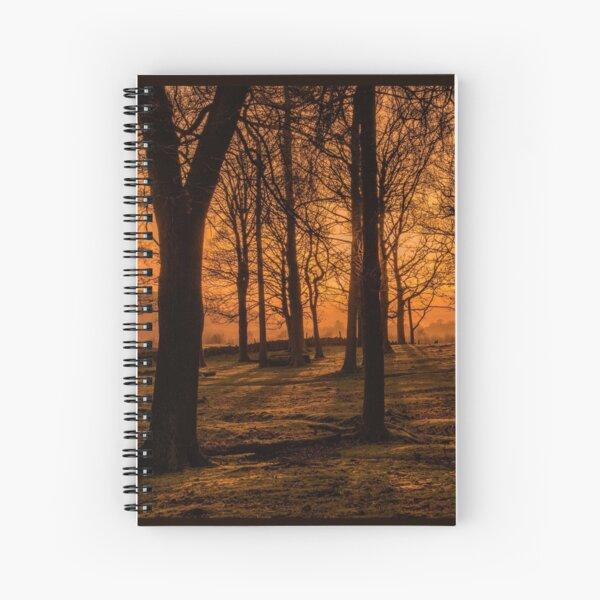 solstice stirrings.... by Phil Darby Spiral Notebook