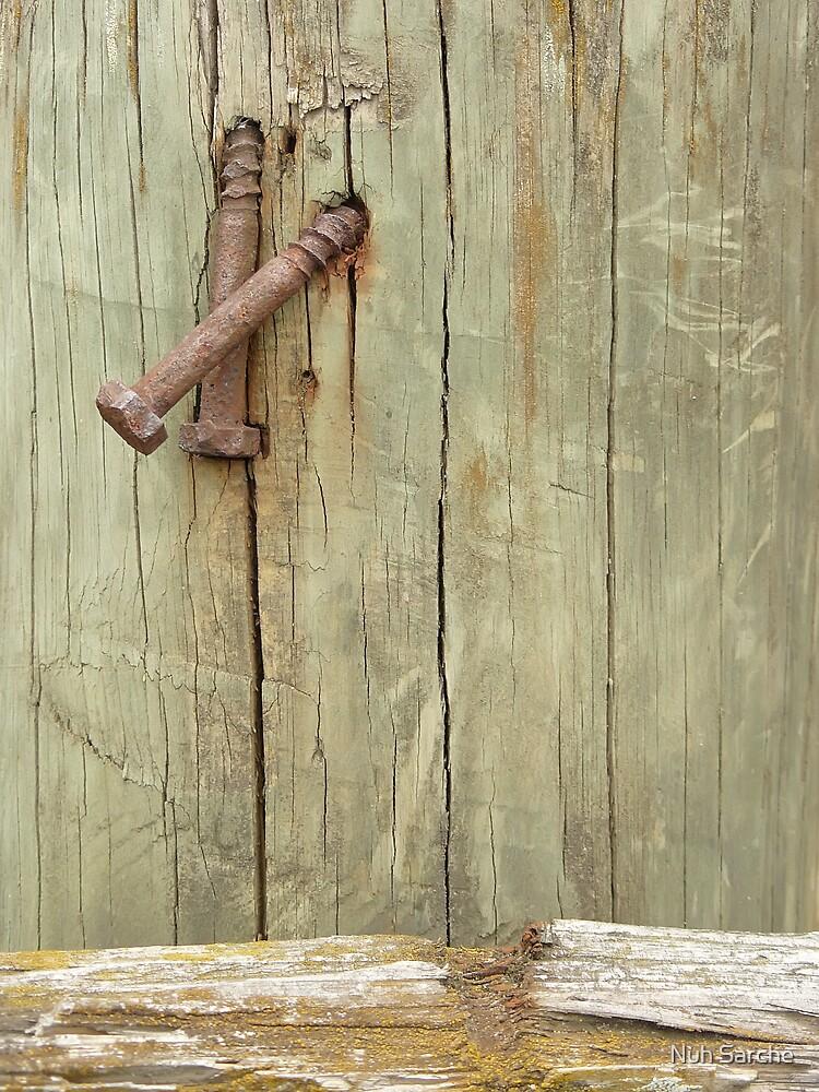 Screws... by Nuh Sarche